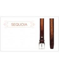 Andres Sendra Belt: Sequoia